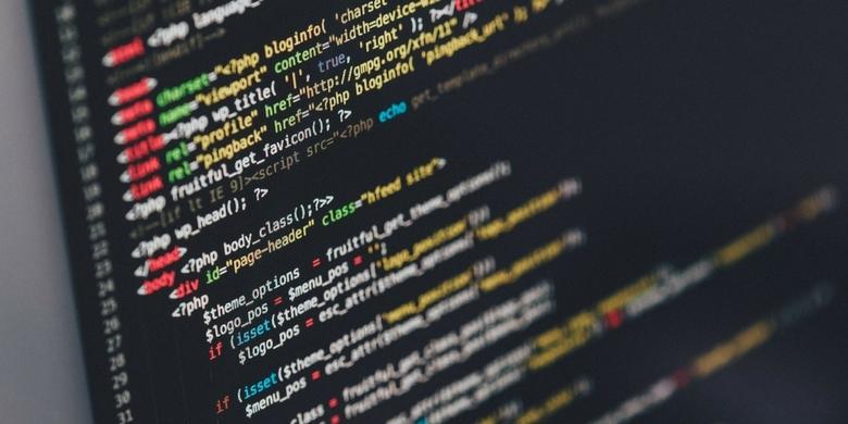 Zawód: programista. Jak zdobyć kompetencje?