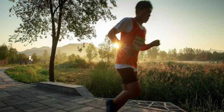 Dieta biegacza: przewodnik dla początkujących